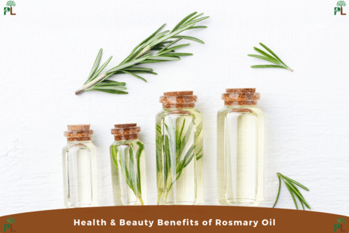 health and skin benefits of rosemary oil